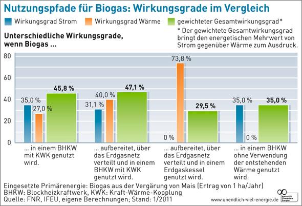 Wirkungsgrad Biogas