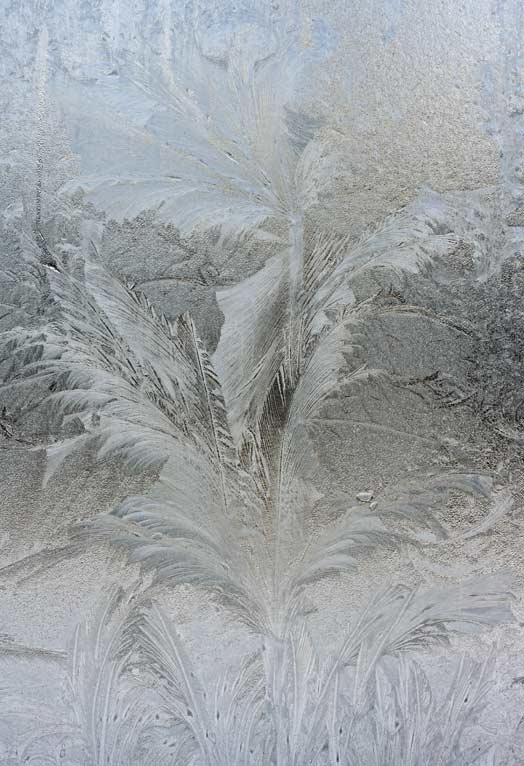 Eisblume auf Zweischeiben-Isolierglas
