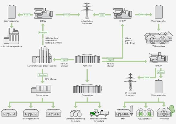 Nutzungspfade für Bioerdgas