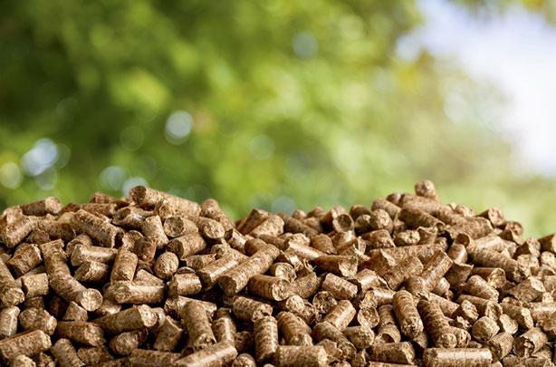 Holzpellets sind ein Produkt der Natur und helfen, Heizkosten zu senken.