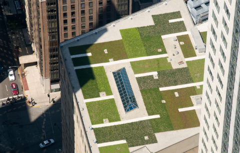Green Roof Chicago