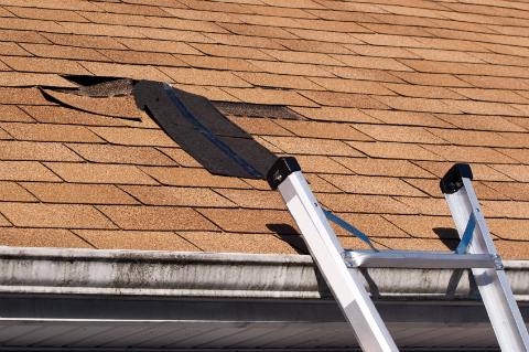 Missing Shingles on a Shingle Roof